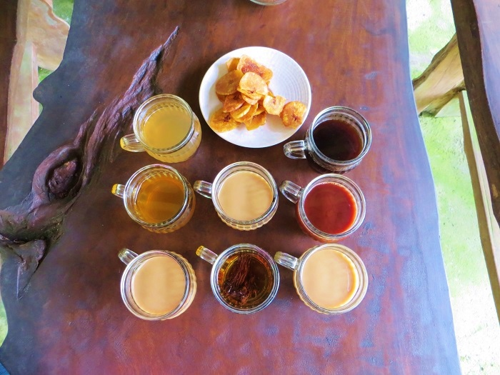 Bali coffee and tea plantation tasting