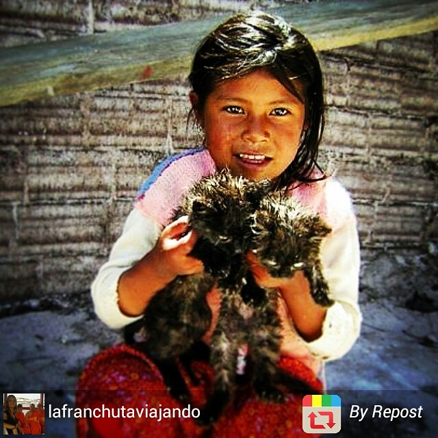 Young Bolivian girl and cat